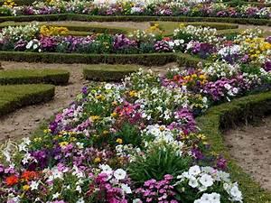 flowers for flower lovers.: Flowers garden wallpapers.