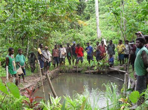 malum nalu potential  aquaculture development  papua