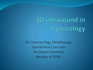3 D Ultrasound In Gynecology Presentation