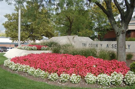 flower beds annual flower beds www pixshark com images galleries with a bite