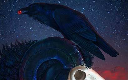Occult Raven Gothic Creepy Skull Halloween Dark