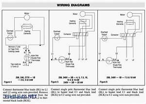 Bulldog Security Alarm Wiring Diagram