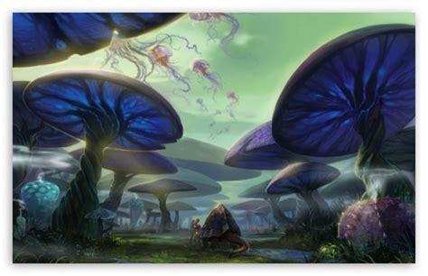 Mushroom Forest 4k Hd Desktop Wallpaper For 4k Ultra Hd Tv