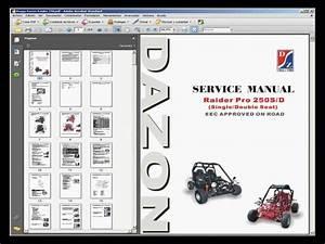 Dazon Raider 250 Buggy - Service Manual