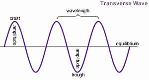 What Does A Diagram Of A Transverse Wave Indicate