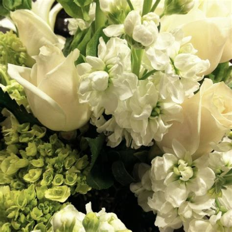 Green And White Flower Arrangement Flowers And Shells