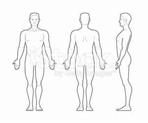Body outline medical clipart