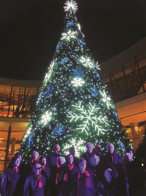 christmas lights images  pinterest christmas