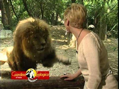ingresso zoo di pistoia zoo di pistoia 60 sec maggio 2011 mpg