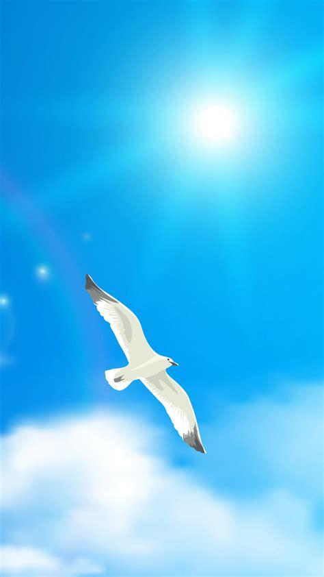Uccello Simile Al Gabbiano - uccello in volo volo sky sfondo ala gull gabbiano immagine
