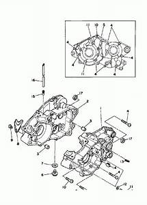 Yamaha Blaster Crankcase Oil