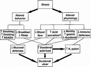 A Model Postulating Behavioral And Psychophysiological
