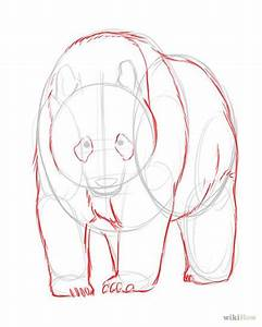 how to draw realistic animals step by step for kids ...