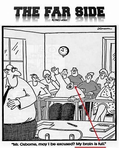 Far Side Larson Gary Cartoons Fun Science