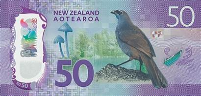 Note Nz Zealand Bank Dollar Kokako Banknotes