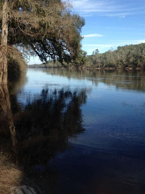 florida suwannee river living will let you get away from it all mayo