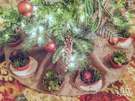 succulents spruce christmas tree dream tree challenge