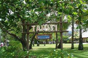 PCC entrance - Picture of Polynesian Cultural Center, Laie ...