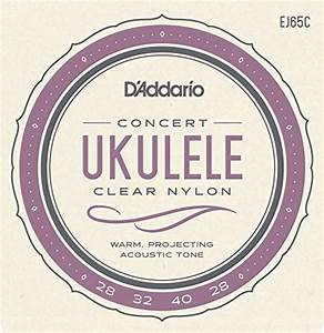 Play Ukulele Today   A Complete Guide To The Basics Level