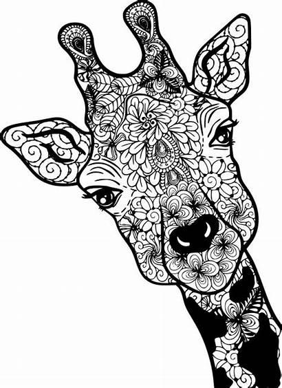 Coloring Giraffe Mandala Svg Animal Cricut Mandalas