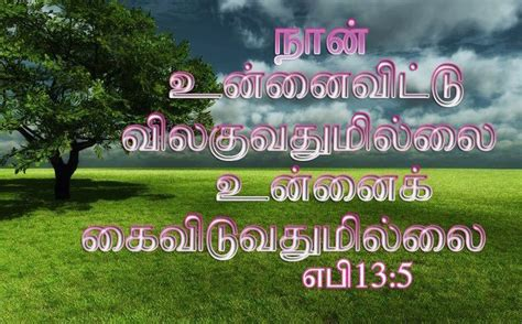 tamil bible words hd wallpaper gallery