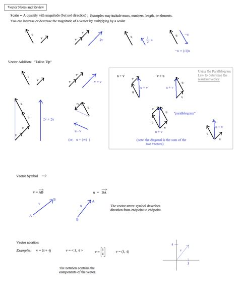vectors worksheet vectors vector components math worksheet vectors best