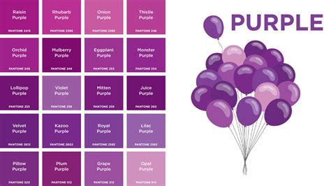 different color purples purple colors names picture gallery and fancy