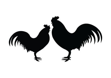 foto de Fighting Rooster Silhouette at GetDrawings Free download