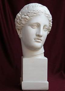 Head Aphrodite of Cnidus Plaster Figure H : 49cm - Sale