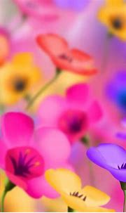 Free download flowers for flower lovers Flowers background ...
