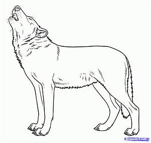 how to draw howling wolves, howling wolf step 9 | Hobby ...