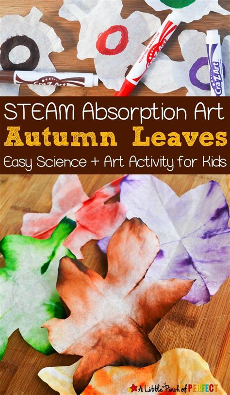660 best images about fall theme ideas on 322 | fbc9ded15bf068886f75fff7178f95f0 preschool science preschool ideas