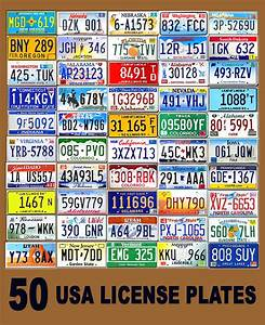 50 ASSORTED USA LICENSE PLATES - COLOR UNITED STATES TAG