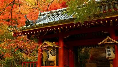 Autumn Asian Fall Japan Japanese Architecture Buildings