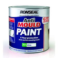 Bathroom Paint Anti Mold by Ronseal Woodstain