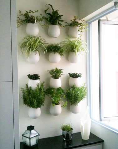 mur végétal et autre jardin vertical extérieur et