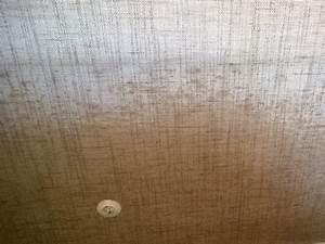 Schimmel Hinter Tapete : gelber schimmel fabulous schimmel unter der tapete schimmel with gelber schimmel stunning ~ Orissabook.com Haus und Dekorationen