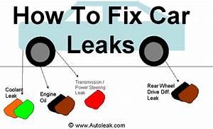 Car Leak Orange Or Green Coolant Black And Brown Oil