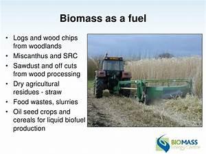Ian Tubby Bioenergy Supply Chain