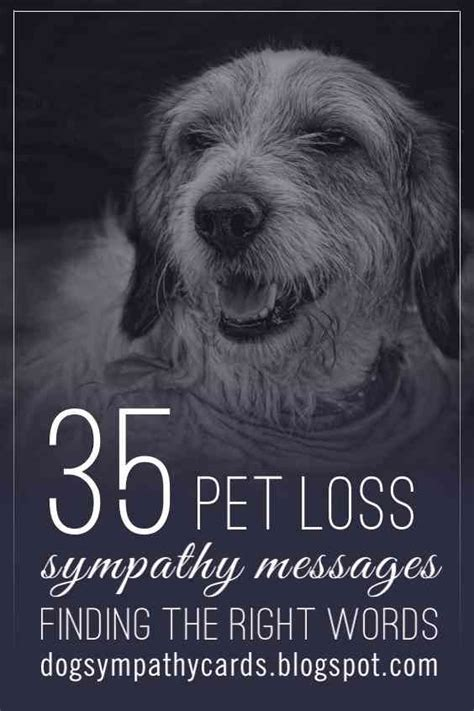 Sympathy Quotes Loss Pet
