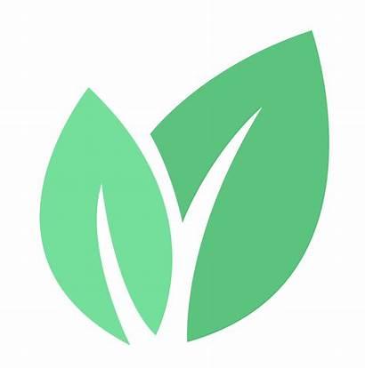 Bio Leaf Inc Vision