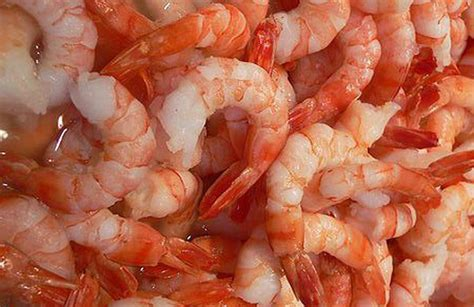 Shrimp Shortage Leads to Price Spike