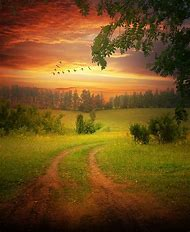 Beautiful Country Road Sunset