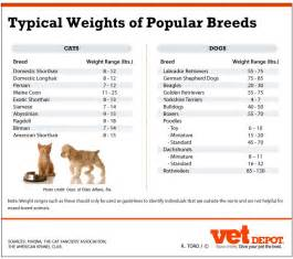 cat weight image gallery normal cat weight chart