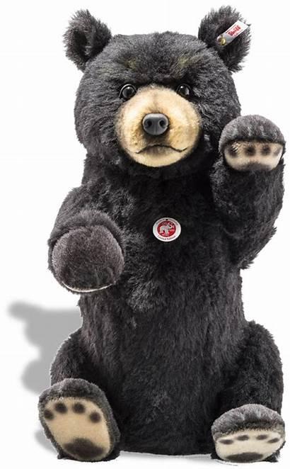 Steiff Teddy Bear Bears Limited Edition Superb