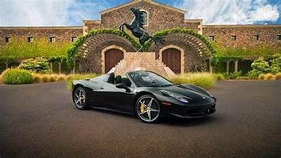 Ferrari Cars Sports Horse Spider Building Animals
