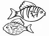 Fish Activity Bestcoloringpagesforkids Via sketch template