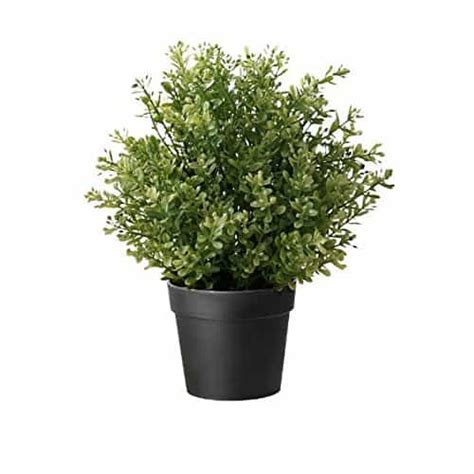 ikea fake trees popular ikea products you can amazingly buy on inspiration for