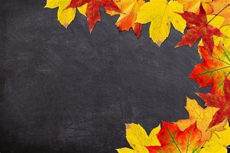 Fall Backgrounds Powerpoint by 15 Free Chalkboard Powerpoint Backgrounds Utemplates
