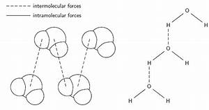 Wiring And Diagram  Diagram Of Water Molecule Labeled